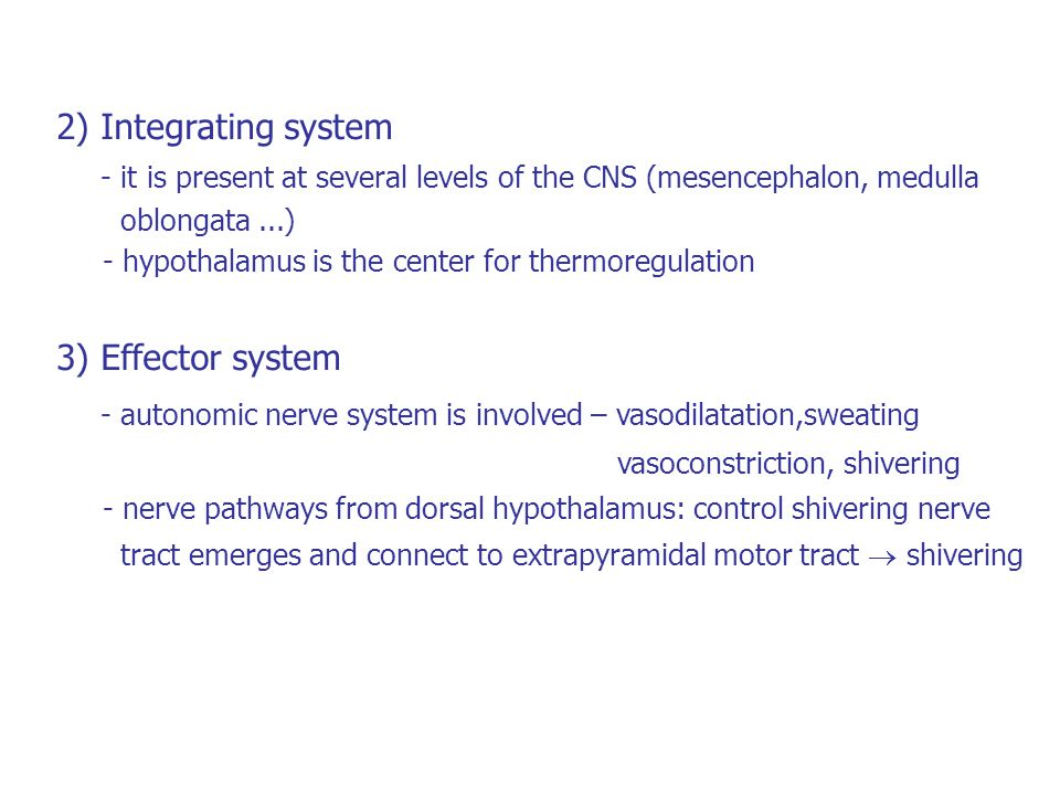 2) Integrating system - it is present at several levels of the CNS (mesencephalon, medulla oblongata...) - hypothalamus is the center for thermoregula