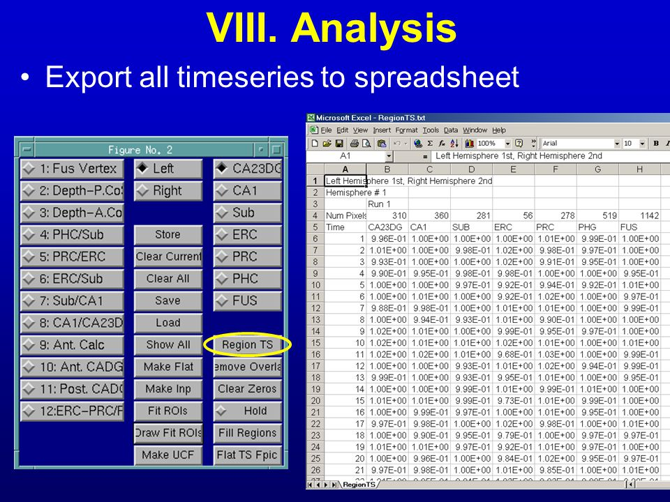 VIII. Analysis Export all timeseries to spreadsheet