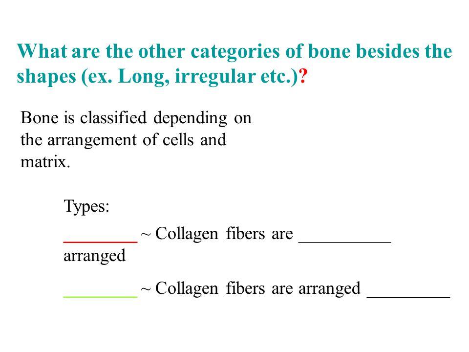 Bone is classified depending on the arrangement of cells and matrix. ________ ~ Collagen fibers are __________ arranged ________ ~ Collagen fibers are