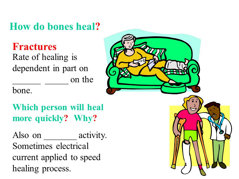 Fractures Rate of healing is dependent in part on ______ _____ on the bone. Which person will heal more quickly? Why? Also on _______ activity. Someti