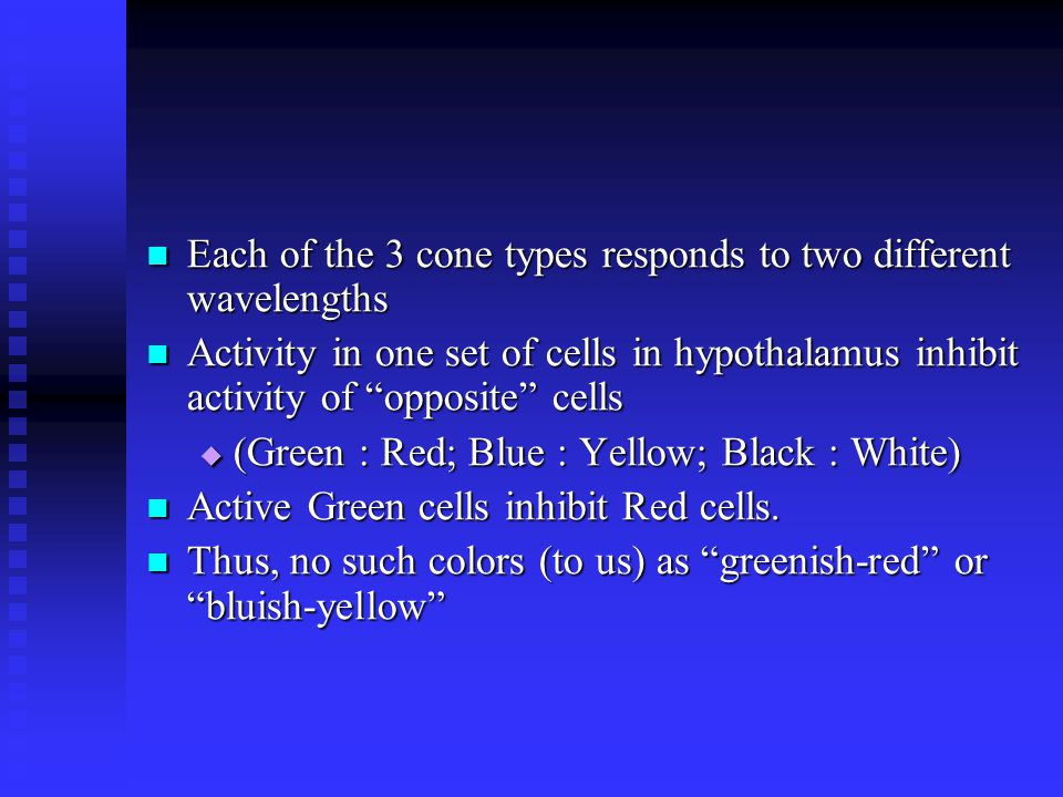 Each of the 3 cone types responds to two different wavelengths Each of the 3 cone types responds to two different wavelengths Activity in one set of cells in hypothalamus inhibit activity of opposite cells Activity in one set of cells in hypothalamus inhibit activity of opposite cells  (Green : Red; Blue : Yellow; Black : White) Active Green cells inhibit Red cells.