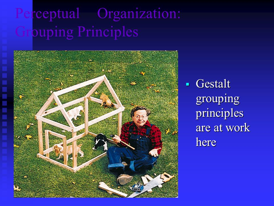 PerceptualOrganization: Grouping Principles  Gestalt grouping principles are at work here