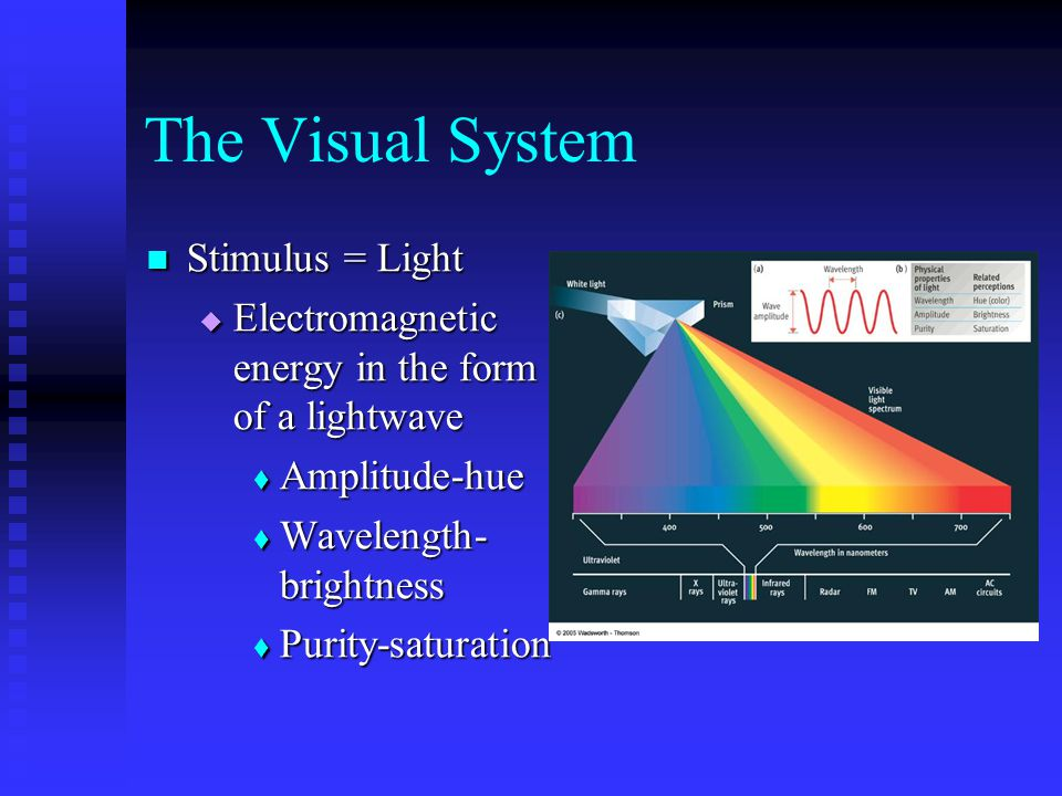 The Visual System Stimulus = Light Stimulus = Light  Electromagnetic energy in the form of a lightwave  Amplitude-hue  Wavelength- brightness  Purity-saturation