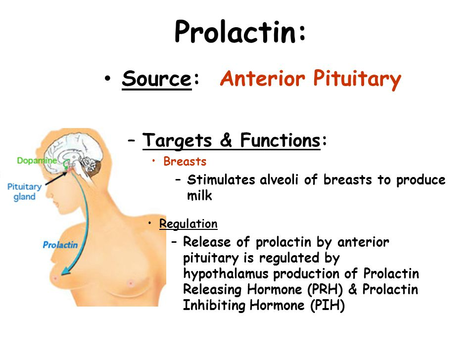 Prolactin: Source: Anterior Pituitary –Targets & Functions: Breasts –Stimulates alveoli of breasts to produce milk Regulation –Release of prolactin by
