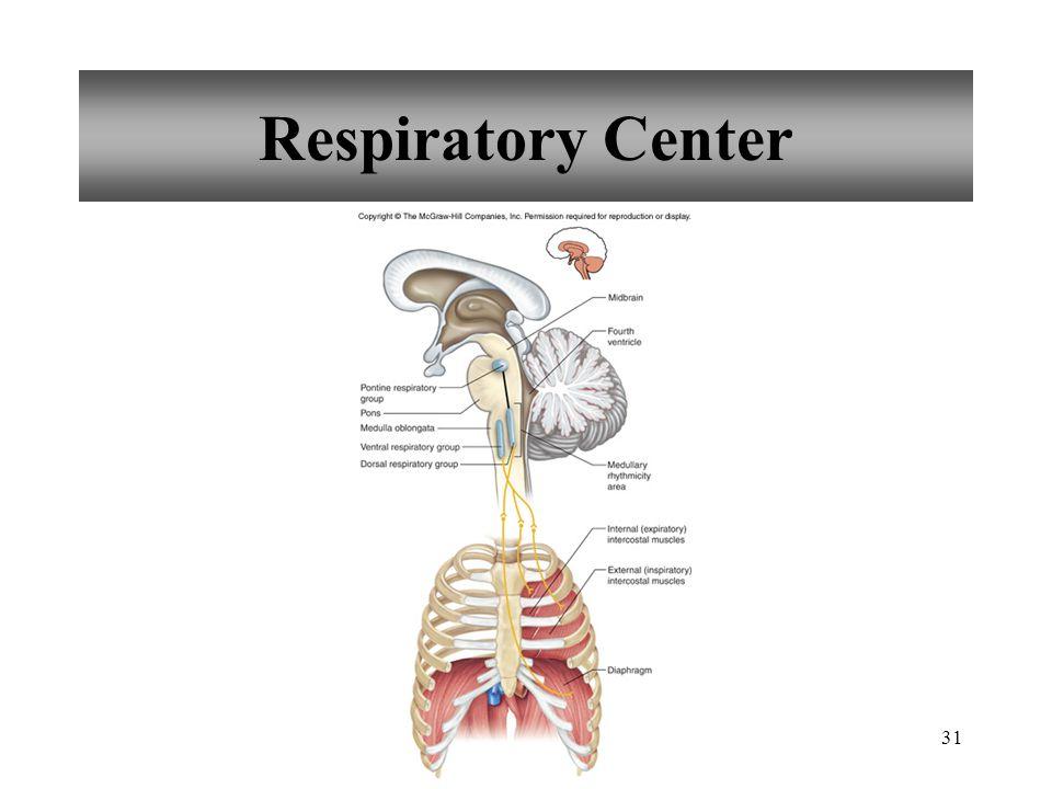 31 Respiratory Center