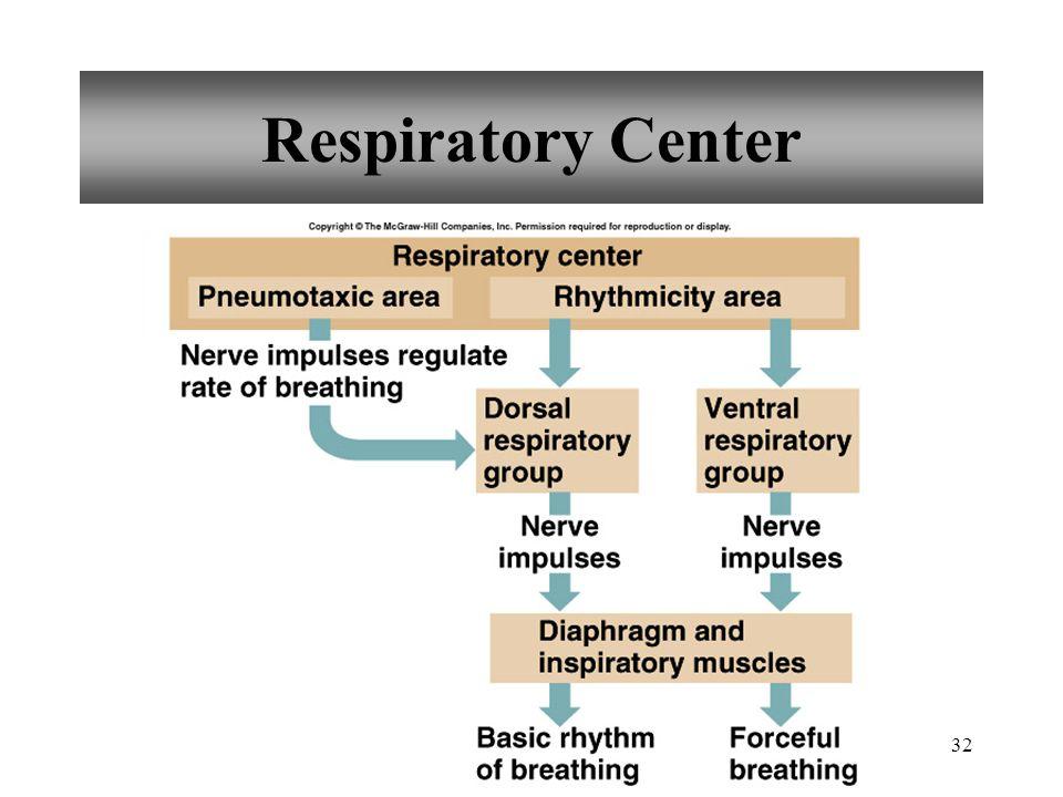 32 Respiratory Center