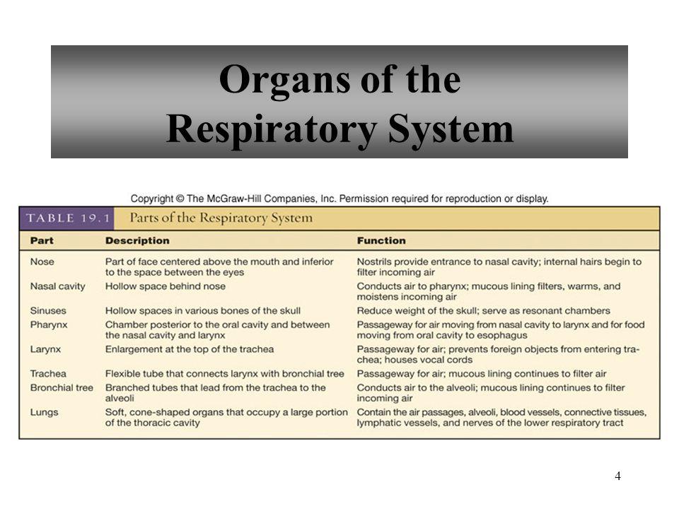 15 Diffusion Across Respiratory Membrane