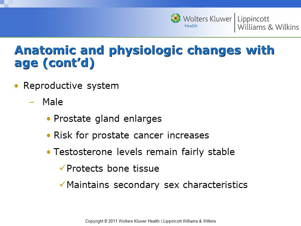 Copyright © 2011 Wolters Kluwer Health | Lippincott Williams & Wilkins Anatomic and physiologic changes with age (cont'd) Reproductive system –Male Prostate gland enlarges Risk for prostate cancer increases Testosterone levels remain fairly stable Protects bone tissue Maintains secondary sex characteristics