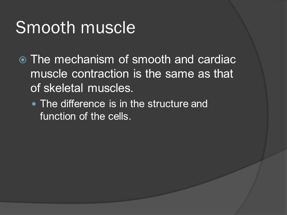 Smooth Muscle Fiber Structure  Cells are shorter and have single, centrally located nucleus.