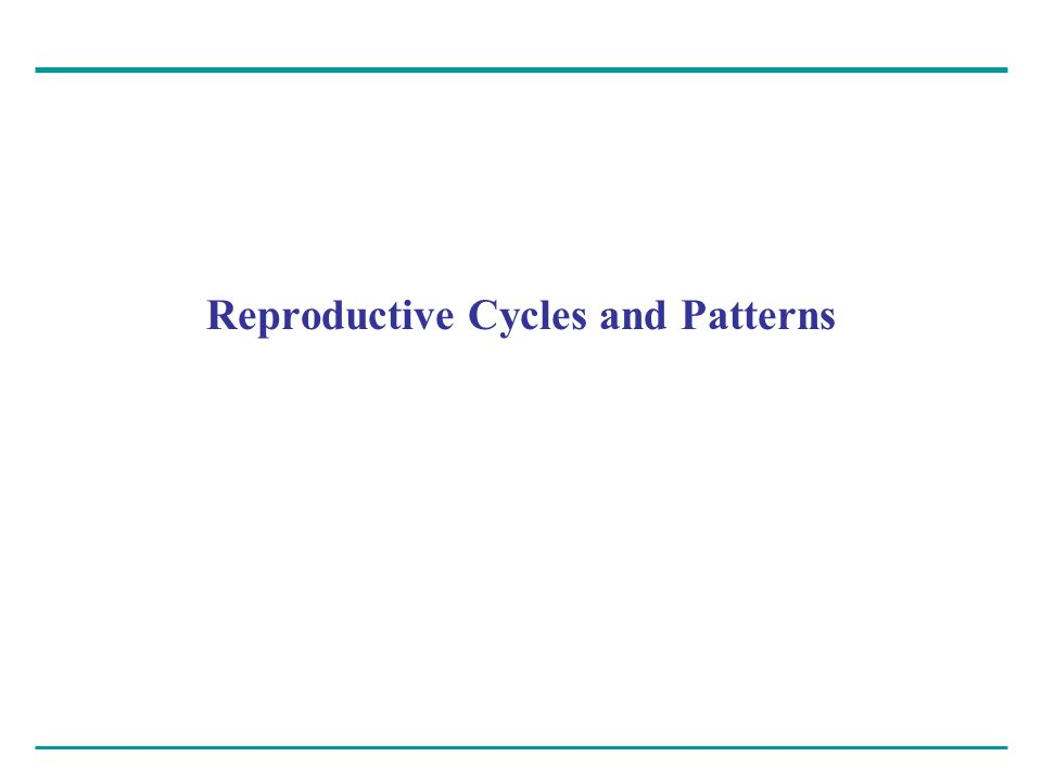 Most animals exhibit cycles in reproductive activity – Often related to changing seasons Reproductive cycles – Are controlled by hormones and environmental cues
