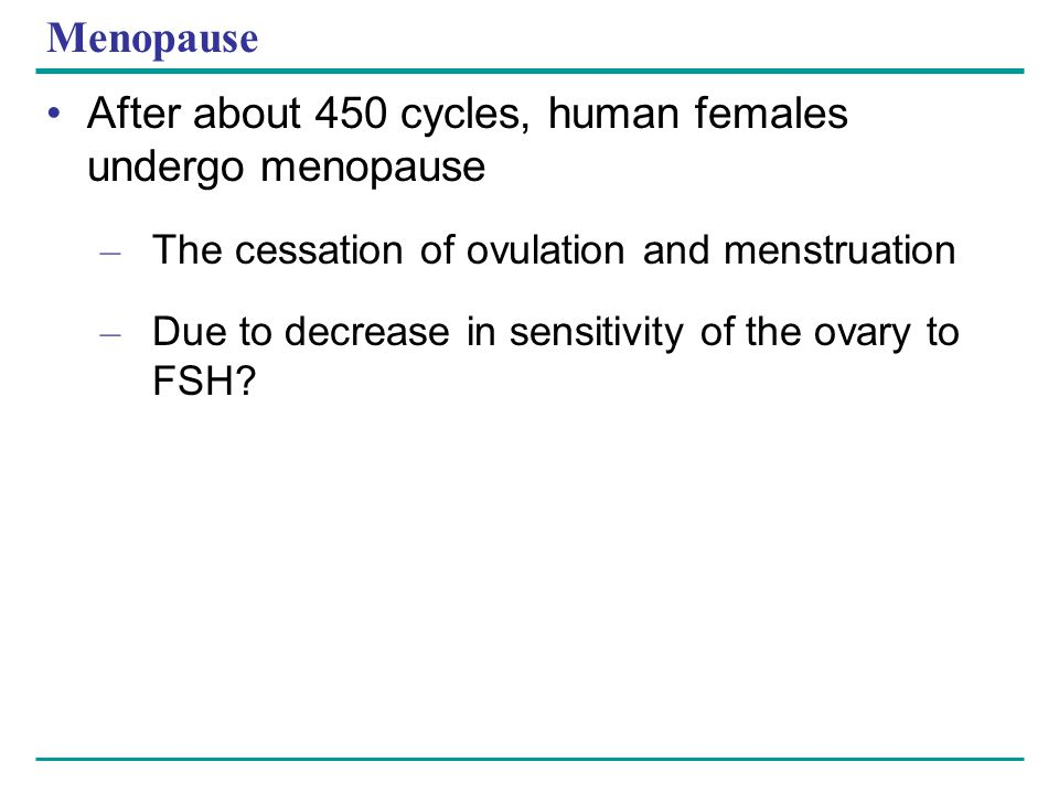 Menopause After about 450 cycles, human females undergo menopause – The cessation of ovulation and menstruation – Due to decrease in sensitivity of th