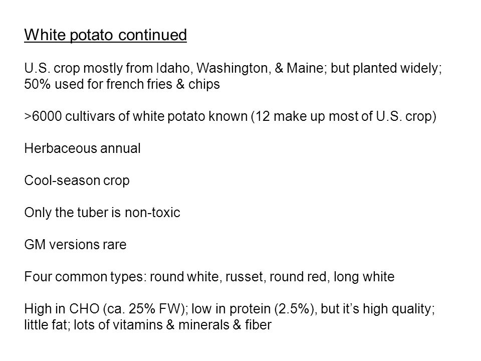 White potato continued U.S.