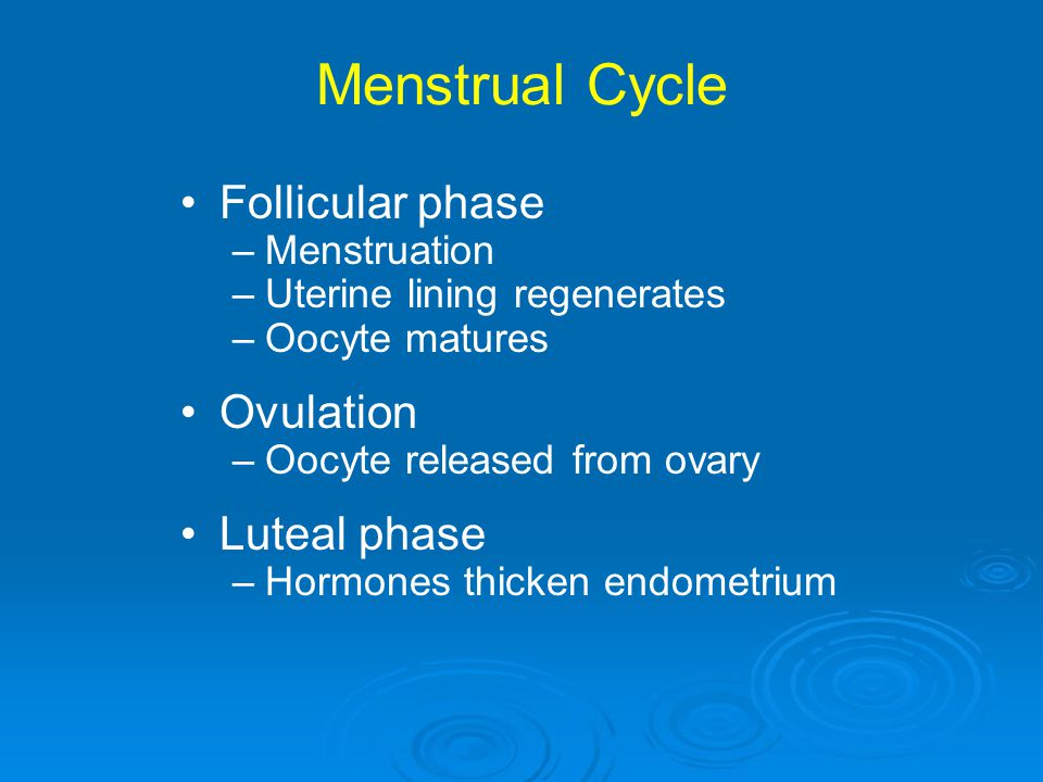 Menstrual Cycle Follicular phase –Menstruation –Uterine lining regenerates –Oocyte matures Ovulation –Oocyte released from ovary Luteal phase –Hormone