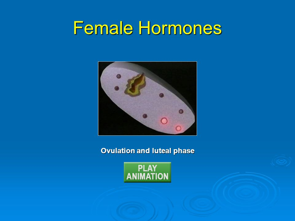 Ovulation and luteal phase Female Hormones