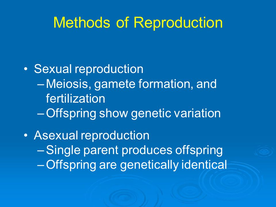 Methods of Reproduction Sexual reproduction –Meiosis, gamete formation, and fertilization –Offspring show genetic variation Asexual reproduction –Sing