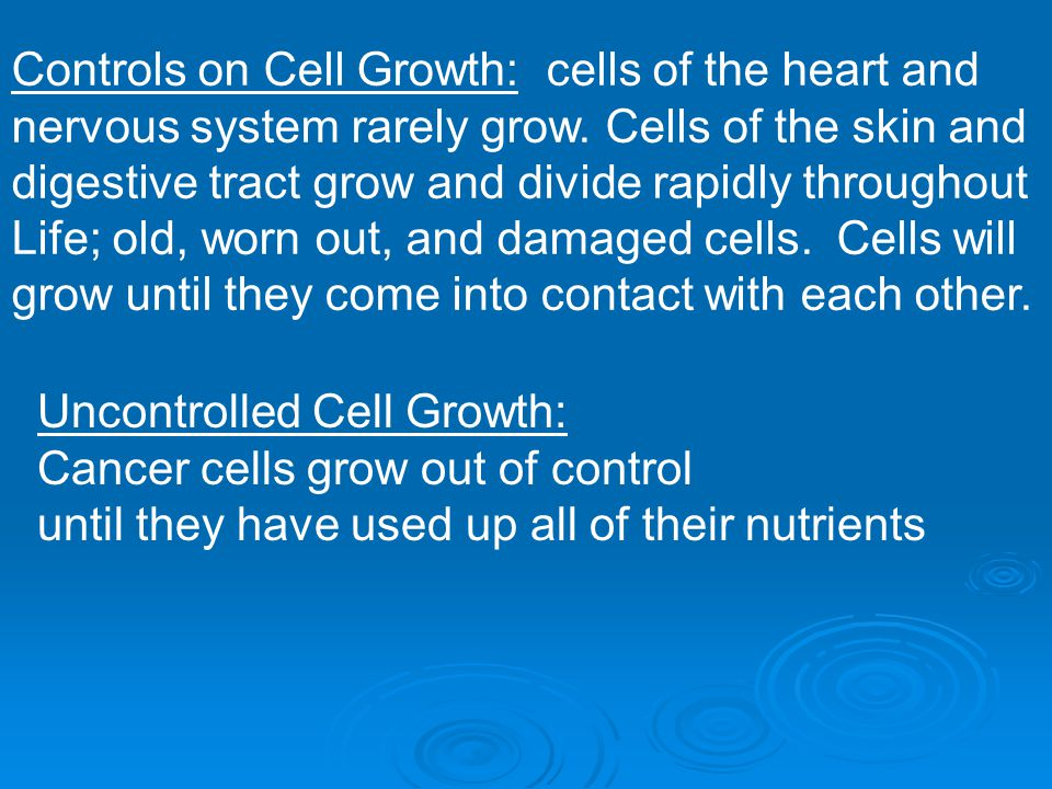 Controls on Cell Growth: cells of the heart and nervous system rarely grow. Cells of the skin and digestive tract grow and divide rapidly throughout L