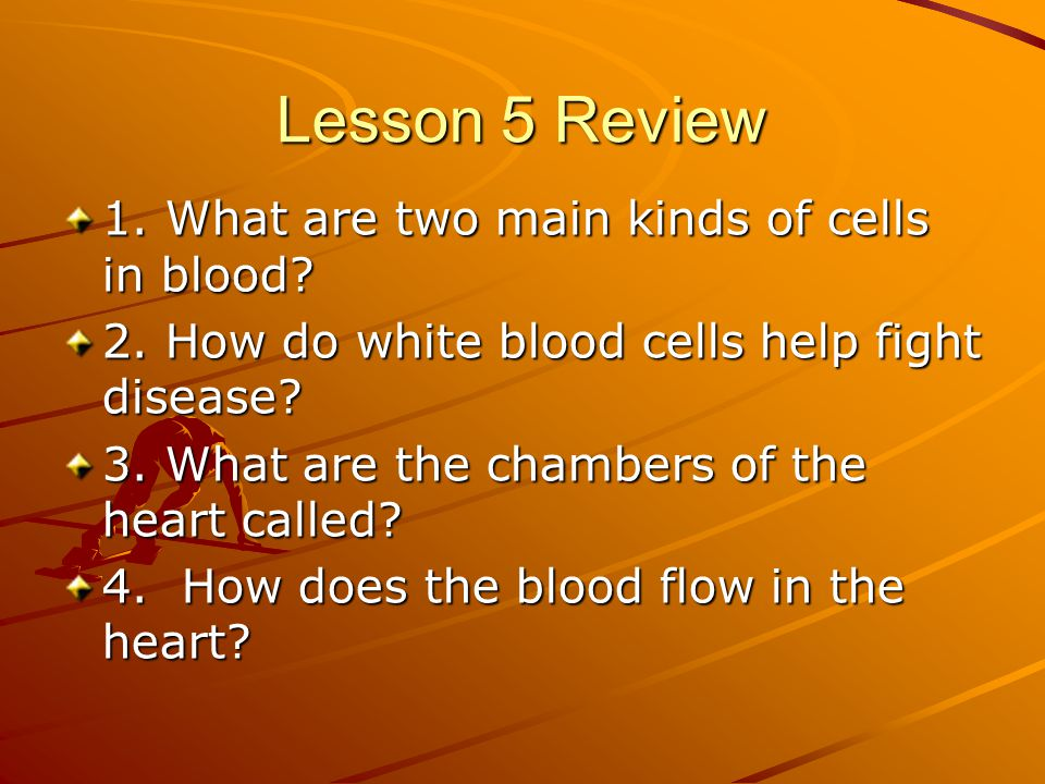 Lesson 5 Review 1. What are two main kinds of cells in blood? 2. How do white blood cells help fight disease? 3. What are the chambers of the heart ca