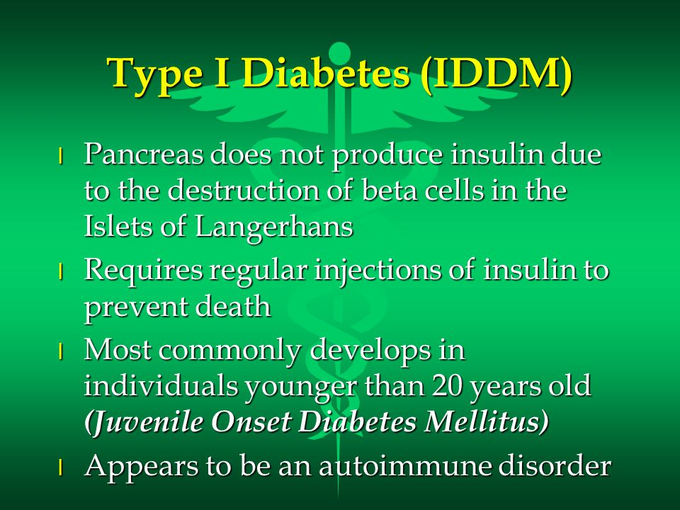 Type I Diabetes (IDDM) l Pancreas does not produce insulin due to the destruction of beta cells in the Islets of Langerhans l Requires regular injections of insulin to prevent death l Most commonly develops in individuals younger than 20 years old (Juvenile Onset Diabetes Mellitus) l Appears to be an autoimmune disorder