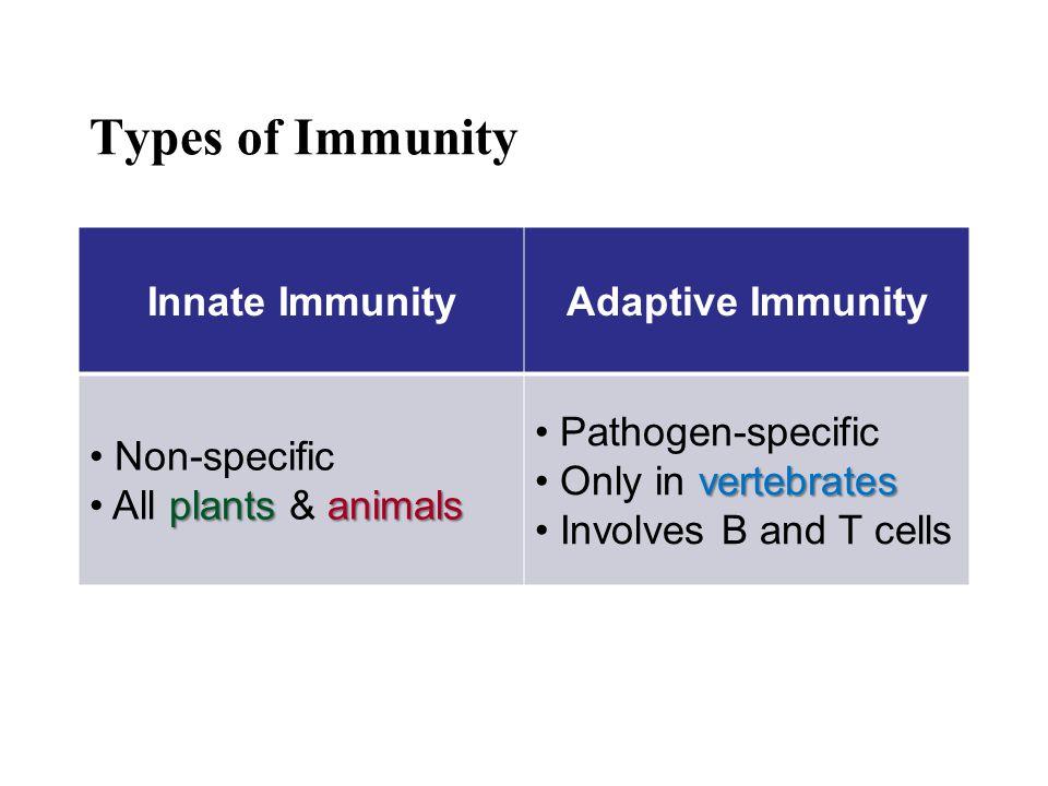 Types of Immunity Innate ImmunityAdaptive Immunity Non-specific plants animals All plants & animals Pathogen-specific vertebrates Only in vertebrates