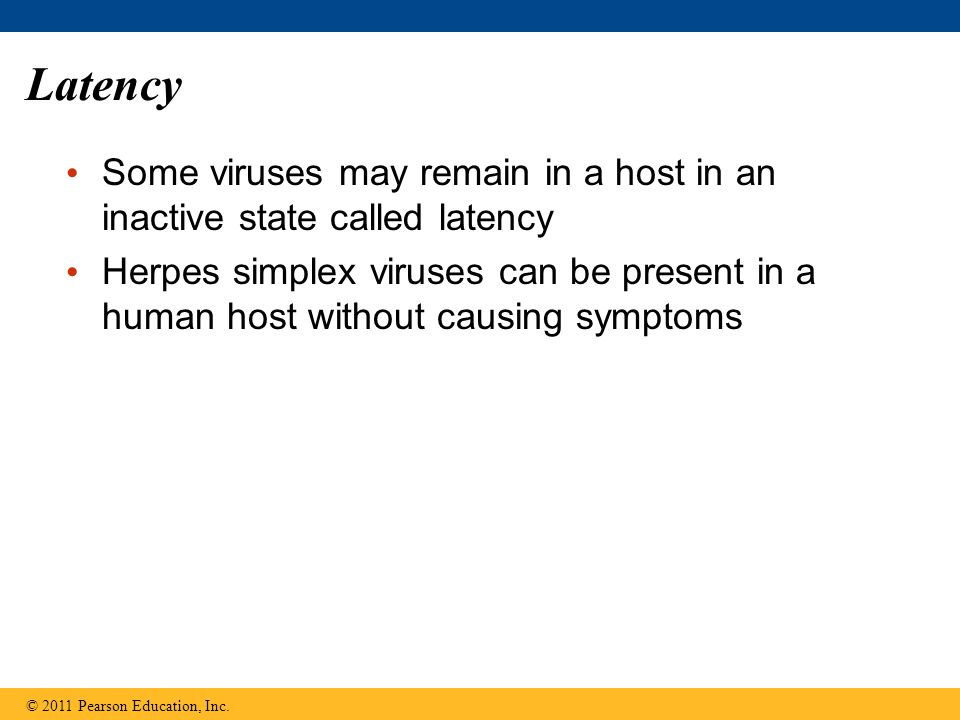 Latency Some viruses may remain in a host in an inactive state called latency Herpes simplex viruses can be present in a human host without causing sy