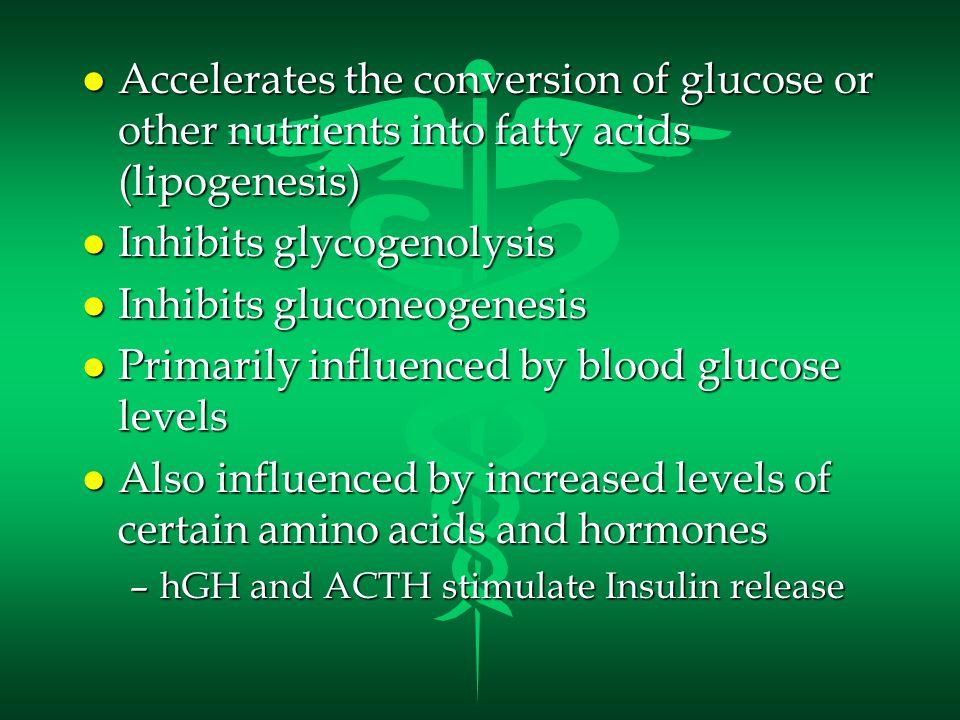 Blood Glucose Regulation l Insulin –Decreases Blood Glucose l Glucagon –Increases Blood Glucose