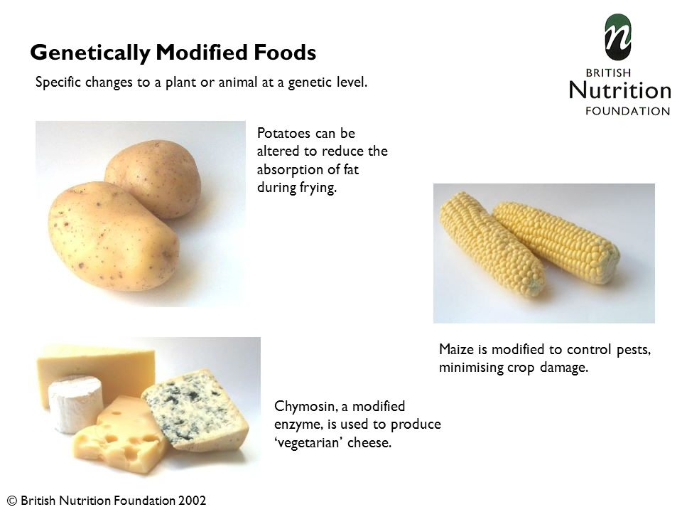 Genetically Modified Foods Potatoes can be altered to reduce the absorption of fat during frying.