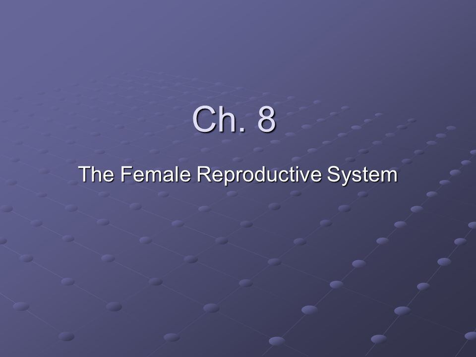 Ch. 8 The Female Reproductive System