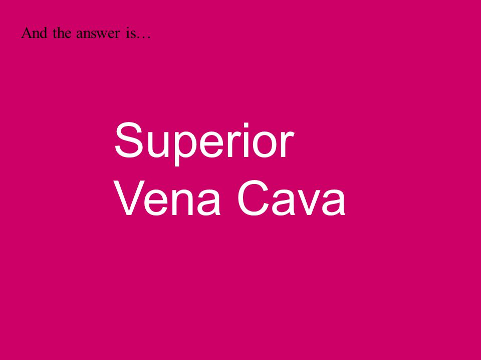 And the answer is… Superior Vena Cava