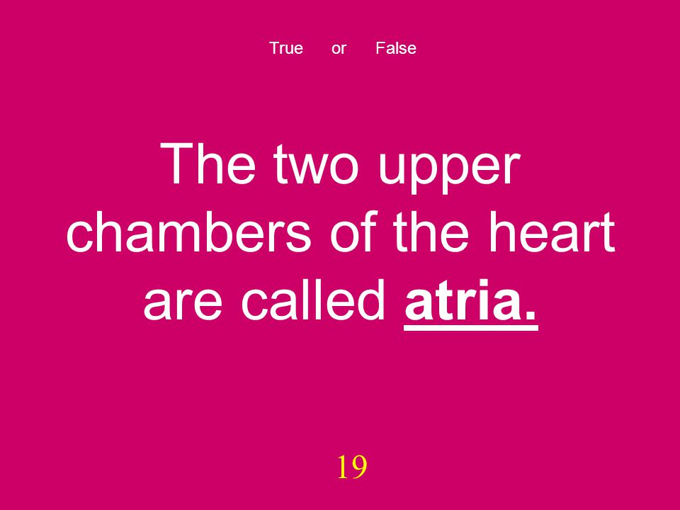19 True or False The two upper chambers of the heart are called atria.