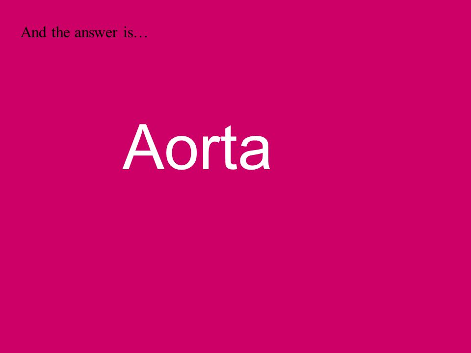 And the answer is… Aorta