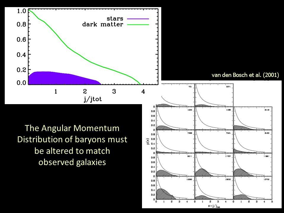 Angular Momentum of Stellar Disk vs DM halo van den Bosch et al.