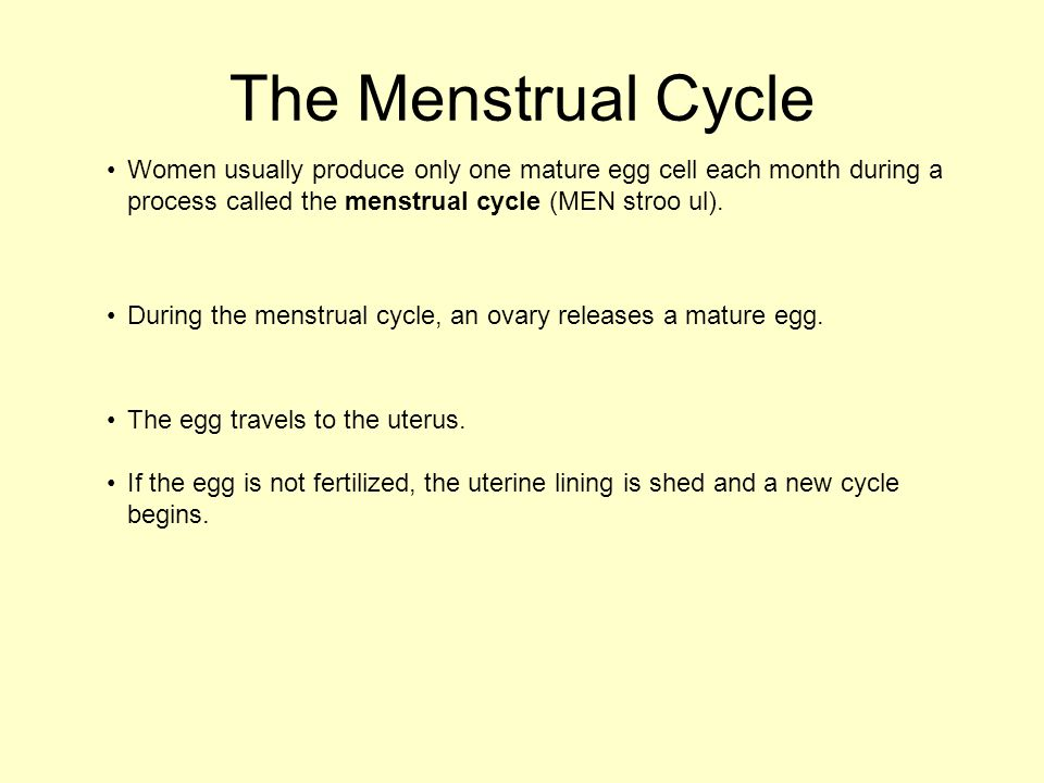 Women usually produce only one mature egg cell each month during a process called the menstrual cycle (MEN stroo ul). The Menstrual Cycle During the m