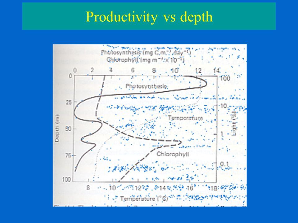 Productivity vs depth