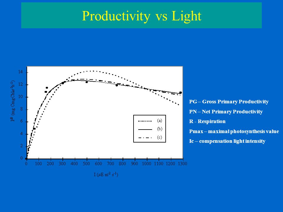 Productivity vs Light PG – Gross Primary Productivity PN – Net Primary Productivity R - Respiration Pmax – maximal photosynthesis value Ic – compensation light intensity