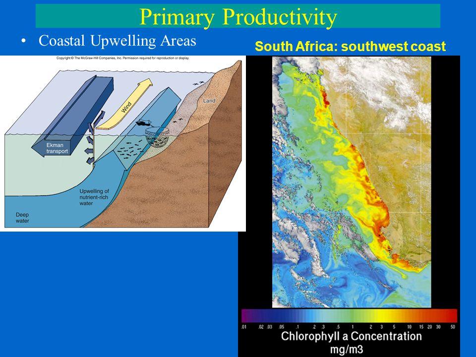 Primary Productivity Coastal Upwelling Areas South Africa: southwest coast