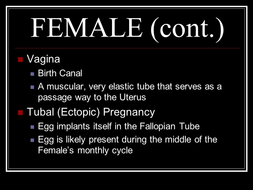 FEMALE (cont.) Vagina Birth Canal A muscular, very elastic tube that serves as a passage way to the Uterus Tubal (Ectopic) Pregnancy Egg implants itse
