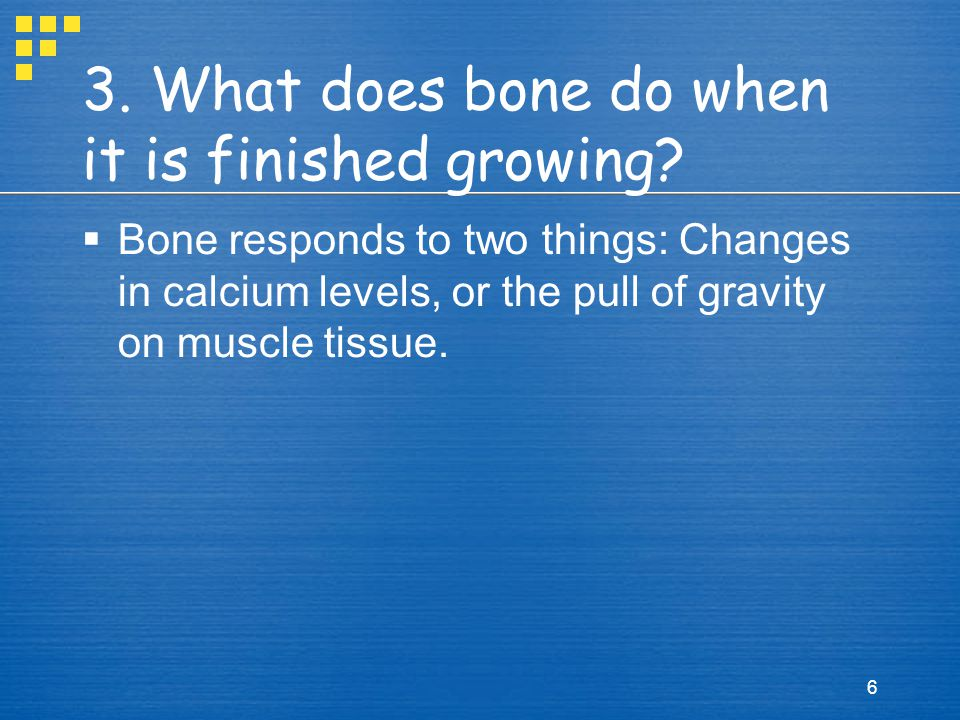 Growth Continued  New cells secrete collagen and Ca ions,  These new cells will stack up on top of each other and form a matrix  New blood vessels are enclosed with a layer of tissue, and new bone is created over the top.