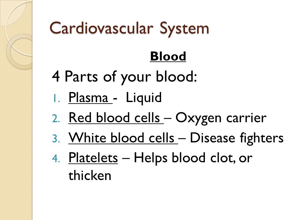 Cardiovascular System Blood 4 Parts of your blood: 1.