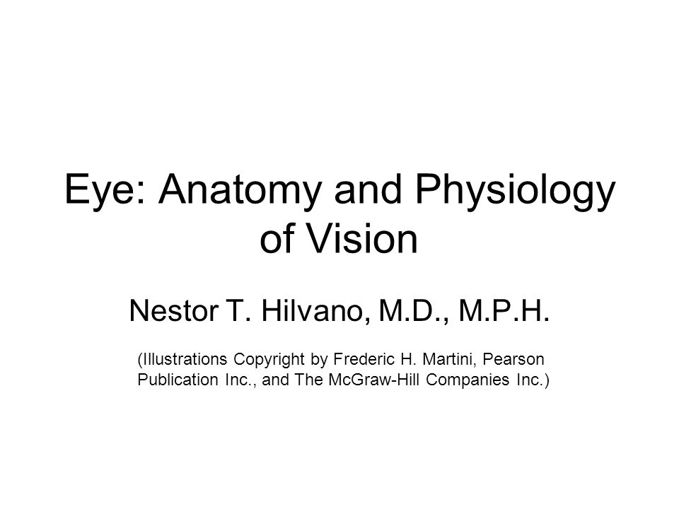 Eye: Anatomy and Physiology of Vision Nestor T. Hilvano, M.D., M.P.H. (Illustrations Copyright by Frederic H. Martini, Pearson Publication Inc., and T