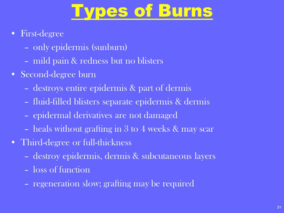 51 Types of Burns First-degree –only epidermis (sunburn) –mild pain & redness but no blisters Second-degree burn –destroys entire epidermis & part of