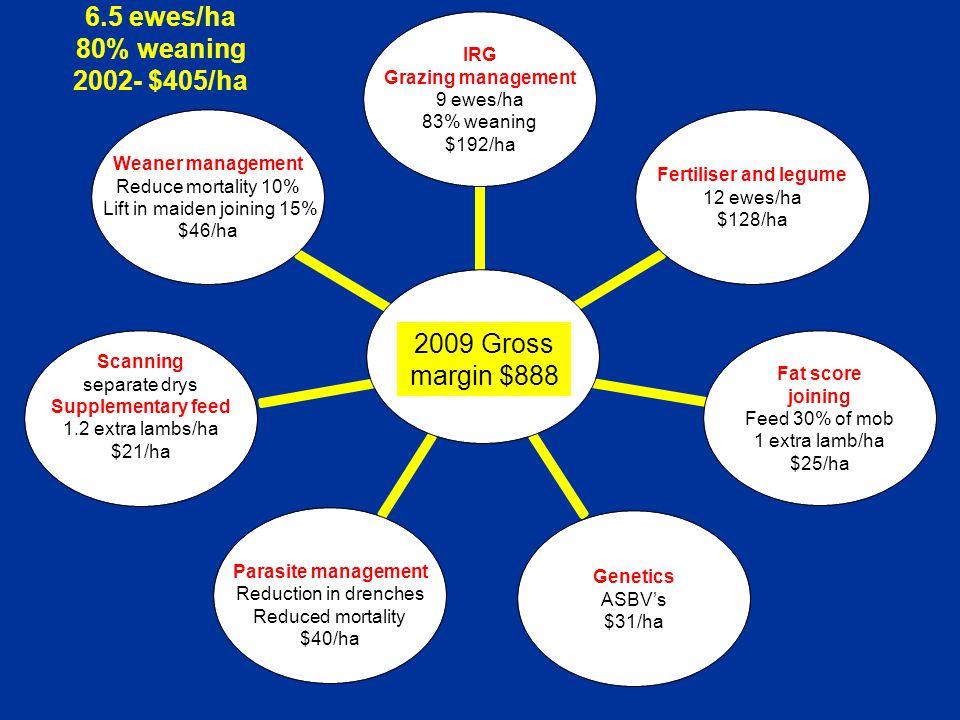 $$$ IRG Grazing management 9 ewes/ha 83% weaning $192/ha Fertiliser and legume 12 ewes/ha $128/ha Fat score joining Feed 30% of mob 1 extra lamb/ha $2