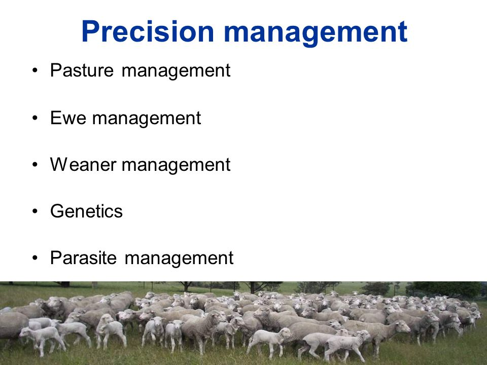 Precision management Pasture management Ewe management Weaner management Genetics Parasite management