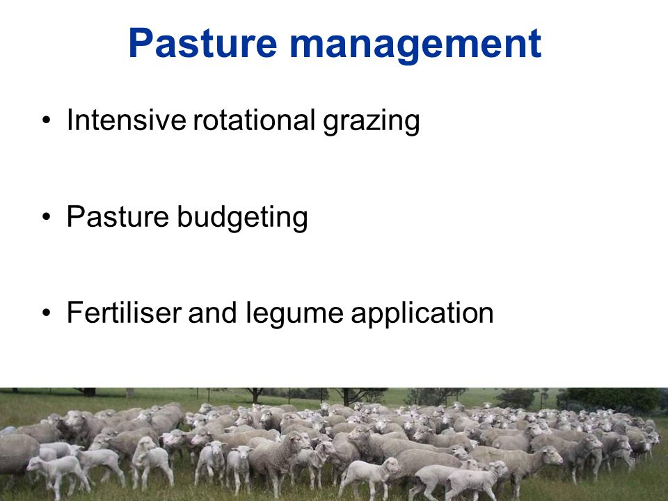 Pasture management Intensive rotational grazing Pasture budgeting Fertiliser and legume application