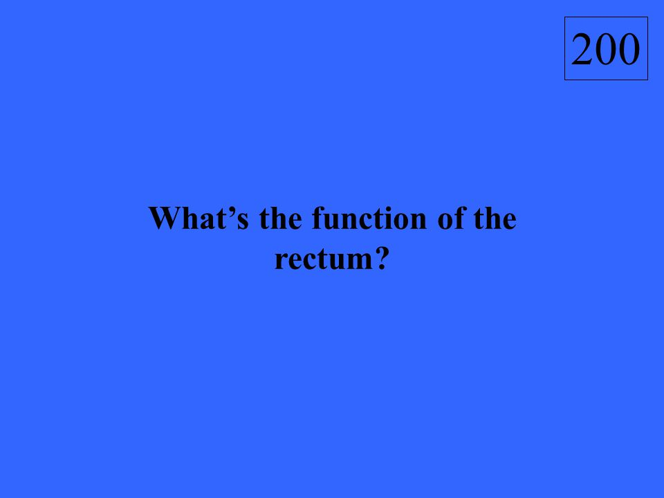200 What's the function of the rectum