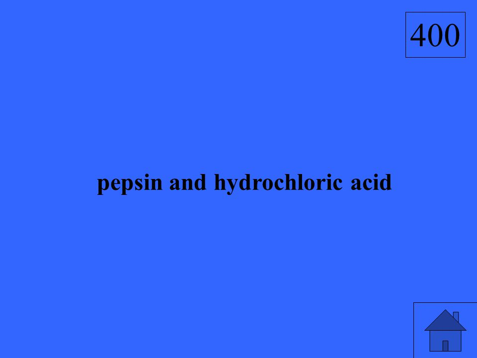 pepsin and hydrochloric acid 400