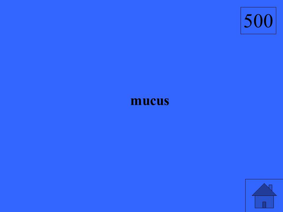 500 mucus