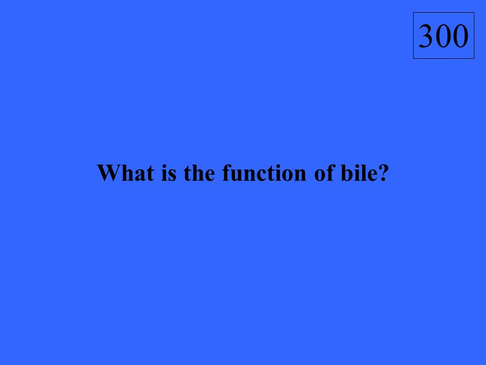 What is the function of bile? 300