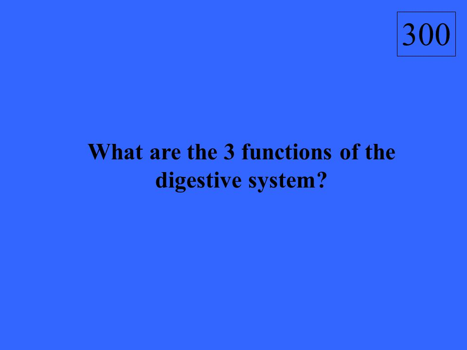 What are the 3 functions of the digestive system? 300
