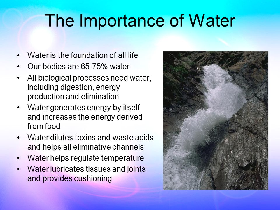 The Importance of Water Water is the foundation of all life Our bodies are 65-75% water All biological processes need water, including digestion, energy production and elimination Water generates energy by itself and increases the energy derived from food Water dilutes toxins and waste acids and helps all eliminative channels Water helps regulate temperature Water lubricates tissues and joints and provides cushioning
