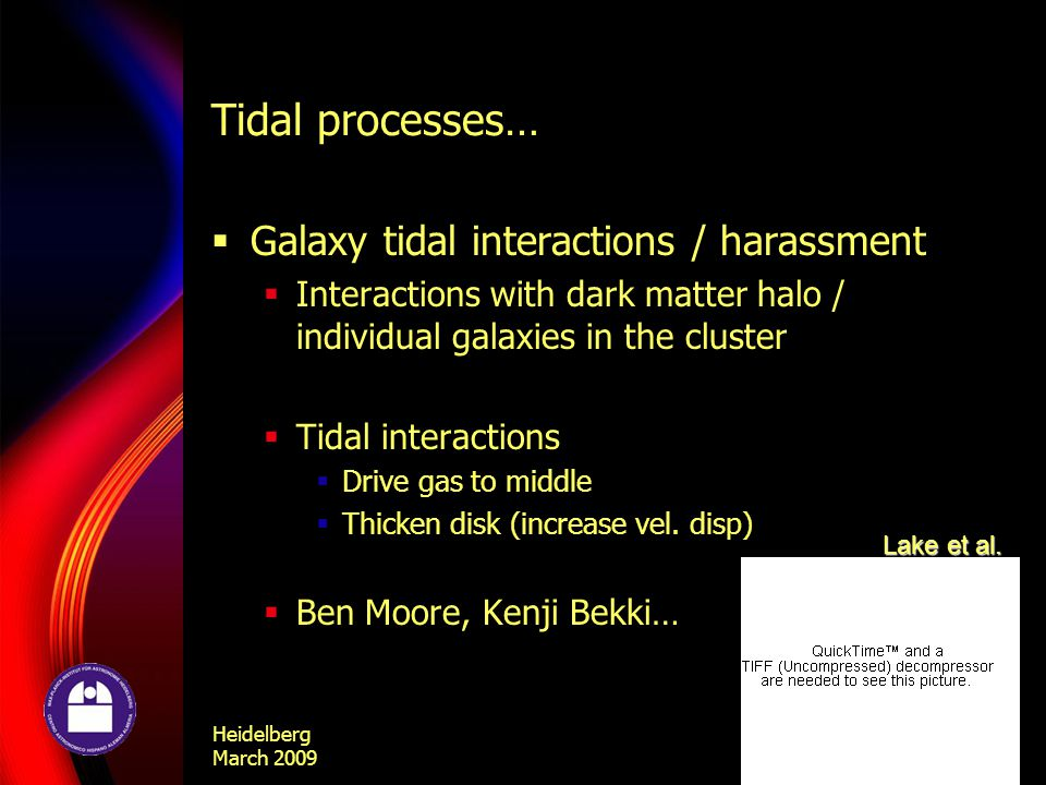 Heidelberg March 2009 Eric Bell Tidal processes…  Galaxy tidal interactions / harassment  Interactions with dark matter halo / individual galaxies in the cluster  Tidal interactions  Drive gas to middle  Thicken disk (increase vel.